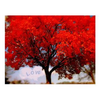 Carte Postale L'amour est dans le ciel…