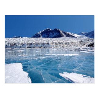 Carte Postale L'Antarctique