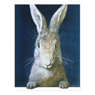 Carte Postale Lapin de Pâques vintage, lapin blanc velu mignon