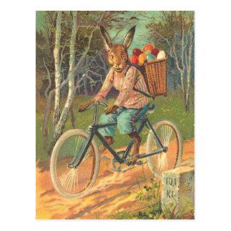 Carte Postale Lapin sur sa bicyclette livrant des oeufs !