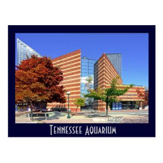 Carte Postale L'aquarium du Tennessee - Chattanooga, TN.
