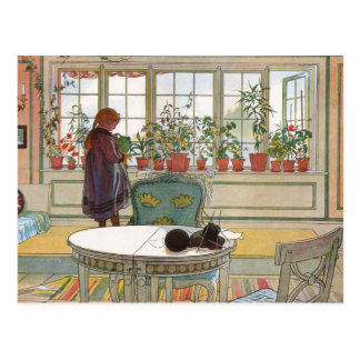 Carte Postale Larsson : Fleurs sur le rebord de fenêtre