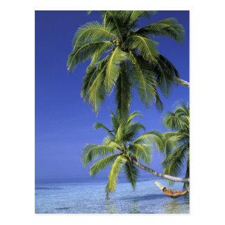Carte Postale L'Asie, îles Maldives. Homme dans l'hamac dessus