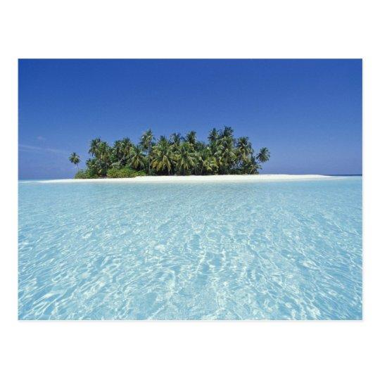 Carte Asie Maldives.Carte Postale L Asie Maldives Atoll D Ari Inhabite Zazzle Fr