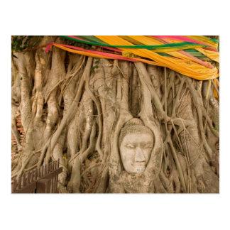 Carte Postale L'Asie, Thaïlande, Siam, Bouddha dans des ornières