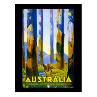 Carte Postale L'Australie vintage Marysville Victoria