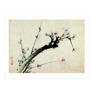 Carte Postale le 梅花, prune de 北斎 se développe, Hokusai, Ukiyo-e