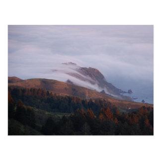 Carte Postale Le brouillard de Baie de San Franciso se dégage