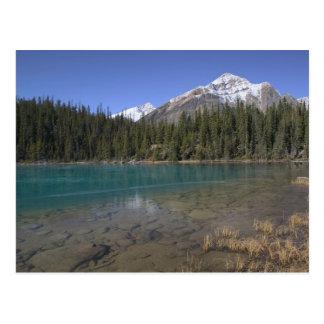 Carte Postale Le Canada, Alberta, parc national de jaspe :