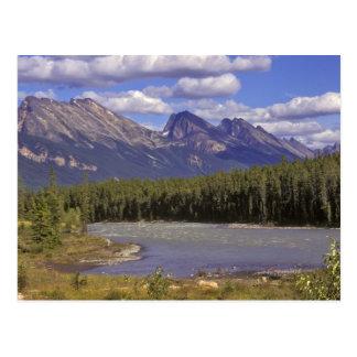 Carte Postale Le Canada, Alberta, parc national de jaspe. Grand
