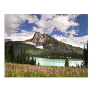 Carte Postale Le Canada, Colombie-Britannique, parc national de