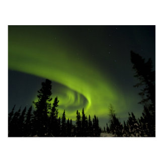 Carte Postale Le Canada, Manitoba. Vue des borealis de l'aurore