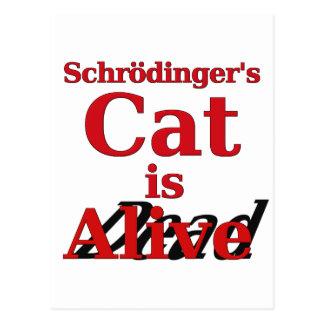 Carte Postale Le chat de Schrodinger est les morts vivants