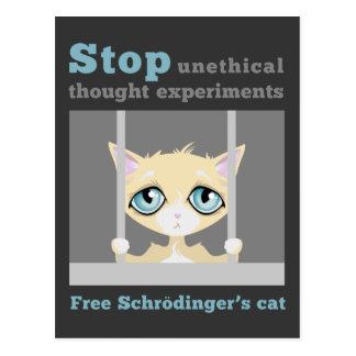 Carte Postale Le chat de Schrodinger libre