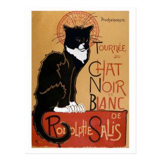 Carte Postale Le Chat Noir et Blanc