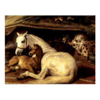 Carte Postale Le cheval vintage