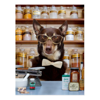 Carte Postale Le chimiste