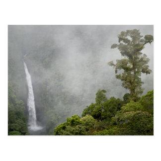 Carte Postale Le Costa Rica, forêt de nuage en montagnes