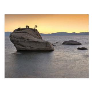 Carte Postale Le coucher du soleil aux bonsaïs basculent, le lac