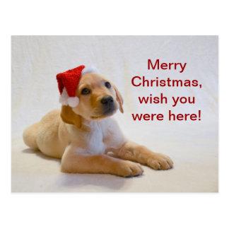"""Carte Postale Le """"cuivre"""" indique le Joyeux Noël !"""