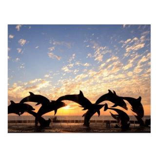 Carte Postale Le dauphin sautant de l'eau au coucher du soleil