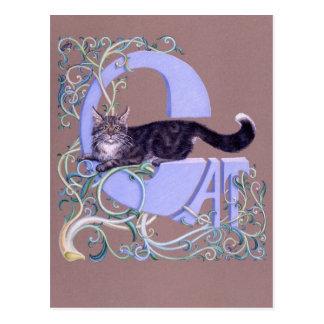 Carte Postale Le Felis illumine