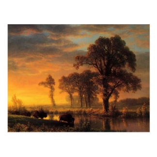 Carte Postale Le Kansas occidental par Albert Bierstadt