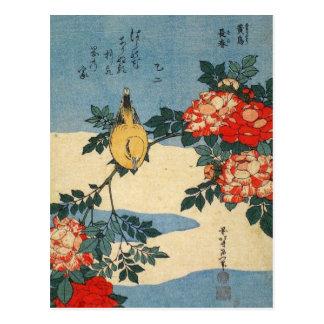 Carte Postale Le loriot et la Chine Noirs-naped se sont levés