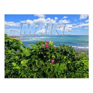 Carte Postale Le Maine