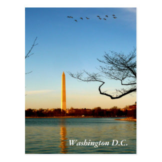 Carte Postale Le monument de Washington