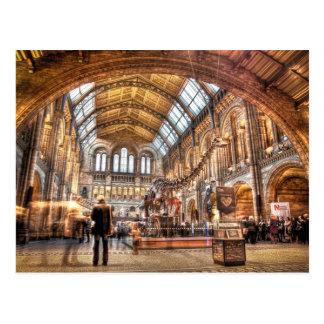 Carte Postale Le musée d'histoire naturelle, Londres