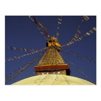 Carte Postale Le Népal, Katmandou. Sous des drapeaux de prière,