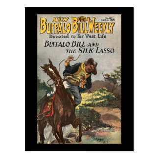 Carte Postale Le nouveau no. hebdomadaire 330 1919 de Buffalo