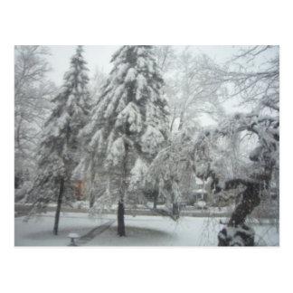 Carte Postale Le pays des merveilles d'hiver
