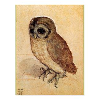 Carte Postale Le petit hibou par Albrecht Durer