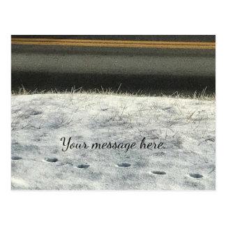 Carte Postale Le pied d'herbe de neige imprime l'hiver vos