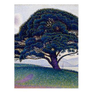 Carte Postale Le pin de Bonaventure par Paul Signac