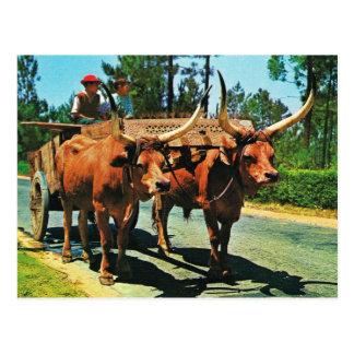 Carte Postale Le Portugal vintage, Minho, chariots de boeuf au
