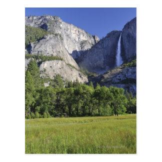 Carte Postale Le pré du cuisinier et le Yosemite Falls, Yosemite
