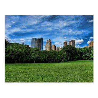 Carte Postale Le pré du mouton, Central Park