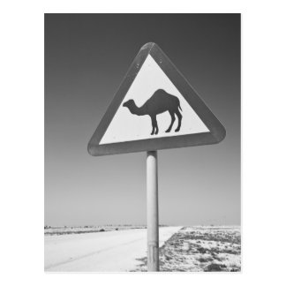 Carte Postale Le Qatar, Al Zubarah. Signe-Route de croisement de