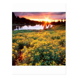 Carte Postale Le Roi Basin San Juan le Colorado d'or de coucher