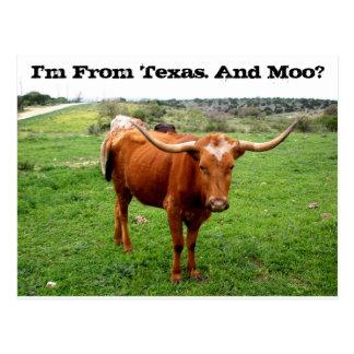 Carte Postale Le Texas Longhorn avec dire drôle du Texas