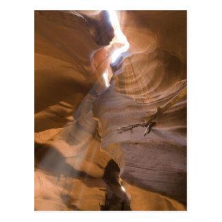 Carte Postale Le tire-bouchon en canyon supérieur d'antilope,