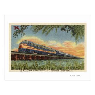 Carte Postale Le train de chemin de fer d'oiseau de ronflement