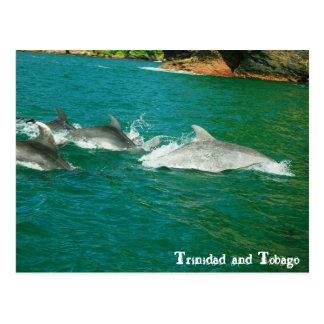 Carte Postale Le Trinidad-et-Tobago
