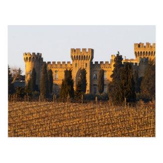 Carte Postale Le vignoble avec les vignes de syrah et le château