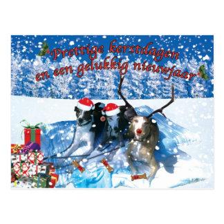 Carte Postale Le whippet kerstkaart