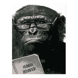 Carte Postale Lecture de chimpanzé