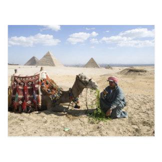 Carte Postale L'Egypte, Gizeh. L'homme indigène charge son